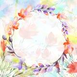 Η ανθοδέσμη Watercolor των λουλουδιών, ιτιά, παπαρούνα, chamomile, μήλο ανθίζει, ελεύθερη απεικόνιση δικαιώματος