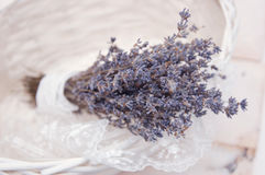 η ανθοδέσμη ανθίζει lavender Στοκ φωτογραφία με δικαίωμα ελεύθερης χρήσης
