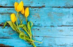 Η ανθοδέσμη της άνοιξη ανθίζει τις τουλίπες Στοκ φωτογραφία με δικαίωμα ελεύθερης χρήσης