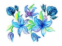 Η ανθοδέσμη του κρίνου αυξήθηκε χέρι σκίτσων watercolor που σύρθηκε Στοκ Εικόνες