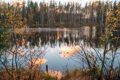 Η αντανάκλαση των ζωηρόχρωμων σύννεφων στη λίμνη στο δάσος φθινοπώρου στοκ εικόνες