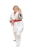 Η ανώτερη γυναίκα karate θέτει Στοκ φωτογραφίες με δικαίωμα ελεύθερης χρήσης