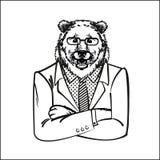 Η αρκούδα, που ντύνεται σε ένα κοστούμι γραφείων Συρμένη τέχνη απεικόνισης σκίτσων γούνινη, επιχείρηση, ζώα ελεύθερη απεικόνιση δικαιώματος