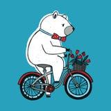 Η αρκούδα στο ποδήλατο με το καλάθι και τα λουλούδια Εκλεκτής ποιότητας απεικόνιση στο μπλε υπόβαθρο Στοκ εικόνα με δικαίωμα ελεύθερης χρήσης