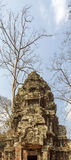 Η αρχαία αρχιτεκτονική στο ναό TA Prohm, Angkor Thom, Siem συγκεντρώνει, Καμπότζη Στοκ φωτογραφία με δικαίωμα ελεύθερης χρήσης