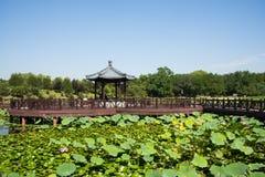 Η Ασία Κίνα, Πεκίνο, παλαιό θερινό παλάτι, λίμνη λωτού φθινοπώρου, η ξύλινη γέφυρα περίπτερων ύφους Στοκ φωτογραφίες με δικαίωμα ελεύθερης χρήσης