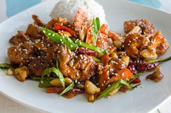 Η Ασία και Sril Lanka δοκιμάζουν - πιάτο του ρυζιού και των γαρίδων στο κτύπημα, πιάτο του s του ρυζιού και γαρίδες στο κτύπημα,  Στοκ Εικόνες