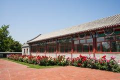 Η Ασία κινέζικα, Πεκίνο, κήπος EXPO, παλαιό κτήριο, προαύλιο, αυξήθηκε λουλούδι Στοκ Φωτογραφίες