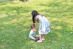 Η ασιατική αδελφή παίρνει φροντίζει αυτή λίγος αδελφός στον κήπο υπαίθριο στοκ εικόνες με δικαίωμα ελεύθερης χρήσης