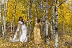 Η ασιατική βιετναμέζικη νύφη με τη μητέρα στα παραδοσιακά βιετναμέζικα γαμήλια φορέματα το κίτρινο φθινόπωρο τα δέντρα του Κολορά στοκ φωτογραφίες