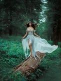 Η δασική νεράιδα φαντασίας Στοκ φωτογραφία με δικαίωμα ελεύθερης χρήσης