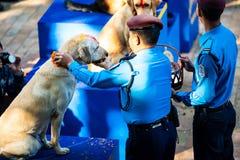 Η αστυνομία του Νεπάλ γιορτάζει Kukur Tihar στο Κατμαντού Στοκ Φωτογραφίες