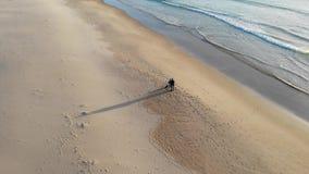 Η ατλαντική παραλία ακτών είναι η πόλη Tarifa Ισπανία, της κυματωγής κυμάτων και της αμμώδους παραλίας στο ηλιοβασίλεμα Κενή παρα φιλμ μικρού μήκους