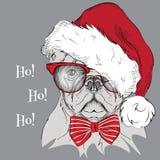 Η αφίσα Χριστουγέννων με το πορτρέτο σκυλιών εικόνας στο καπέλο Santa επίσης corel σύρετε το διάνυσμα απεικόνισης Στοκ εικόνες με δικαίωμα ελεύθερης χρήσης