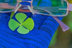 Η αφηρημένη μαλακή θολωμένη και μαλακή εστίαση το crenata Marsilea, Marsileaceae, φύλλο στο μπλε ύφασμα φορά γάντια με τα γυαλιά στοκ εικόνες