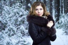 η αφηρημένη όμορφη εικόνα μόδας αυξήθηκε ασημένια χαμογελώντας γυναίκα Στοκ Εικόνα
