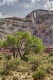 Η αψίδα Hondu από McKay επίπεδο στο SAN Rafael πρήζεται Στοκ Εικόνες