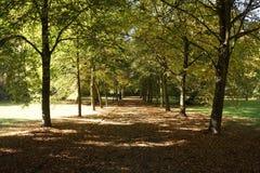 Η αλέα ενός πάρκου στη Γερμανία Στοκ Εικόνες