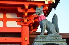 Η αλεπού Inari Στοκ Φωτογραφίες