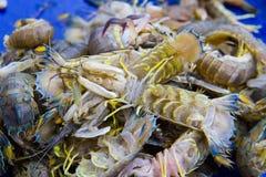 Η αλιεία είναι οι οικονομικοί πόροι των ντόπιων στοκ εικόνες με δικαίωμα ελεύθερης χρήσης