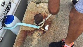 Η βάρκα θάλασσας δένει στην αποβάθρα Κλείστε επάνω την άποψη στο στυλίσκο bitt και η παραγωγή κόμβων θάλασσας επανδρώνει το χέρι απόθεμα βίντεο