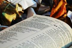 η Βίβλος στα απορρίματα στοκ φωτογραφία με δικαίωμα ελεύθερης χρήσης