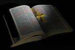 Η Βίβλος Στοκ Φωτογραφίες