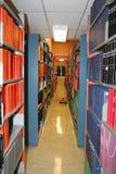 η βιβλιοθήκη τοποθετεί &si Στοκ Εικόνες