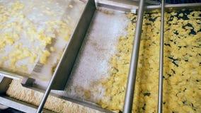 Η βιομηχανική μηχανή με το foamy υγρό επεξεργάζεται τα κομμάτια πατατών απόθεμα βίντεο