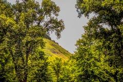 Η βουνοπλαγιά του Ουισκόνσιν κατά μήκος του ποτάμι Μισισιπή στοκ φωτογραφία με δικαίωμα ελεύθερης χρήσης