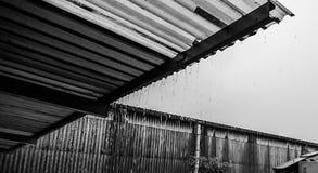 η βροχή του Στοκ Εικόνες