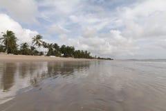 Η βόρεια ακτή, Rio Grande κάνει Norte, Βραζιλία Στοκ Φωτογραφίες