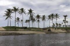 Η βόρεια ακτή, Rio Grande κάνει Norte, Βραζιλία Στοκ εικόνα με δικαίωμα ελεύθερης χρήσης