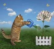 Η γάτα αυξάνεται ένα δέντρο χρημάτων στοκ φωτογραφίες