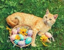 Η γάτα βρίσκεται κοντά σε ένα καλάθι με τα χρωματισμένα αυγά Στοκ Εικόνες