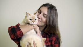 Η γάτα επιτίθεται σε μια γυναίκα όταν φροντίζει η γυναίκα η γάτα στην περιτύλιξή της φιλμ μικρού μήκους
