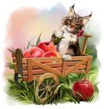 Η γάτα και η συγκομιδή της Apple ελεύθερη απεικόνιση δικαιώματος