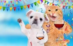 Η γάτα και το σκυλί γιορτάζουν με το γυαλί ουίσκυ και το γυαλί κρασιού Στοκ φωτογραφία με δικαίωμα ελεύθερης χρήσης