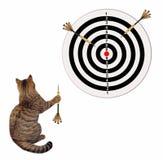 Η γάτα παίζει τα βέλη διανυσματική απεικόνιση