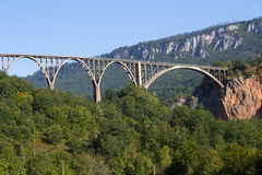Η γέφυρα είναι μια συγκεκριμένη γέφυρα αψίδων πέρα από τον ποταμό της Tara στο βόρειο Μαυροβούνιο Στοκ Φωτογραφίες