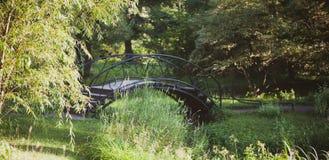Η γέφυρα επεξεργασμένος-σιδήρου μεταξύ των δέντρων στοκ εικόνα