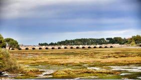 Η γέφυρα μέσω του μεγαλύτερου ποταμού Στοκ εικόνα με δικαίωμα ελεύθερης χρήσης