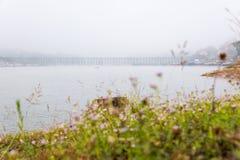 Η γέφυρα μπαμπού Στοκ φωτογραφία με δικαίωμα ελεύθερης χρήσης