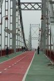 Η γέφυρα πάρκων ή ο πεζός γεφυρώνει πέρα από το Dnieper στο δικαίωμα νησιών Trukhanov κατόπιν Στοκ Εικόνες
