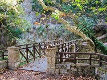 Η γέφυρα πέρα από τον κολπίσκο στο πάρκο Στοκ Εικόνες