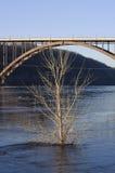η γέφυρα περιβάλλει υψη&lambda Στοκ εικόνες με δικαίωμα ελεύθερης χρήσης