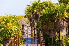 Η γέφυρα στον αμμώδη παράδεισο Playa παραλιών του νησιού Cayo βραδύτατου, Κούβα Κινηματογράφηση σε πρώτο πλάνο Στοκ εικόνα με δικαίωμα ελεύθερης χρήσης