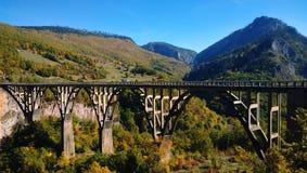 Η γέφυρα DurÄ ` eviÄ ‡ μια γέφυρα της Tara στο Μαυροβούνιο στον καιρό φθινοπώρου Στοκ εικόνα με δικαίωμα ελεύθερης χρήσης