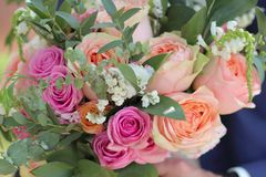 Η γαμήλια ανθοδέσμη των τριαντάφυλλων ροδάκινων από το Δαβίδ Ώστιν, ενιαίος-κεφάλι ρόδινο αυξήθηκε aqua, ευκάλυπτος, ruscus, gyps Στοκ εικόνα με δικαίωμα ελεύθερης χρήσης