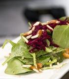 Η γαστρονομική σαλάτα σπανακιού με το κόκκινο κτυπά στοκ εικόνες